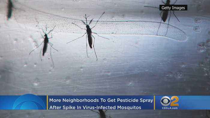 More OC Neighborhoods To Get Pesticide Spray After Spike In Virus-Infected Mosquitoes