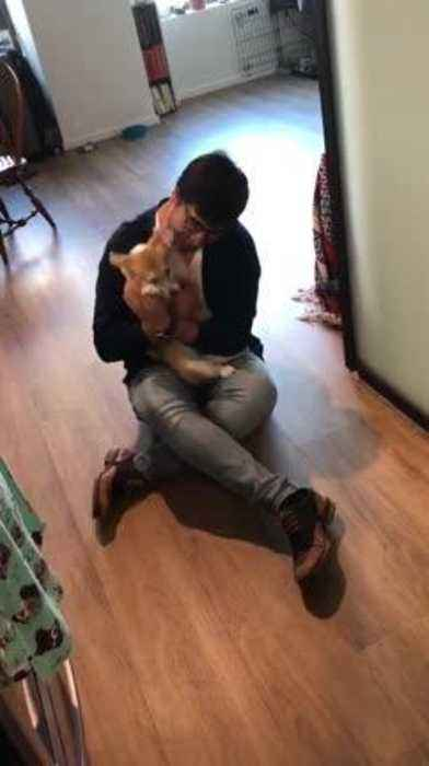 Dog Excitedly Jumps and Licks Owner Seeing Him After Long Break