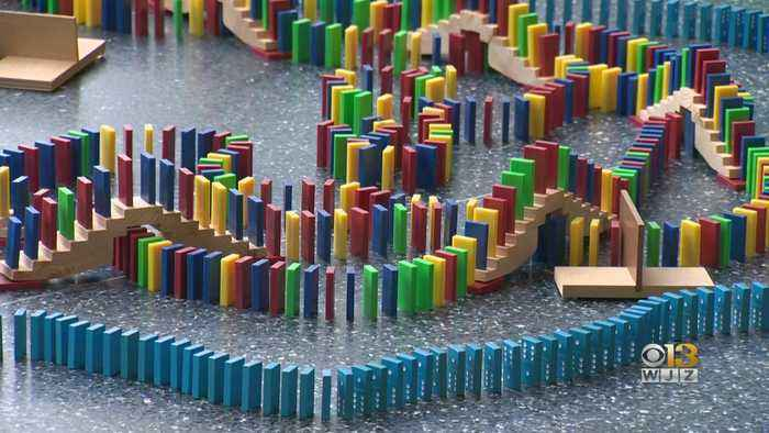 Massive Domino Display Set To Fall At Maryland Science Center This Weekend