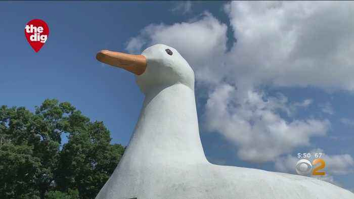 The Dig: Long Island's Big Duck