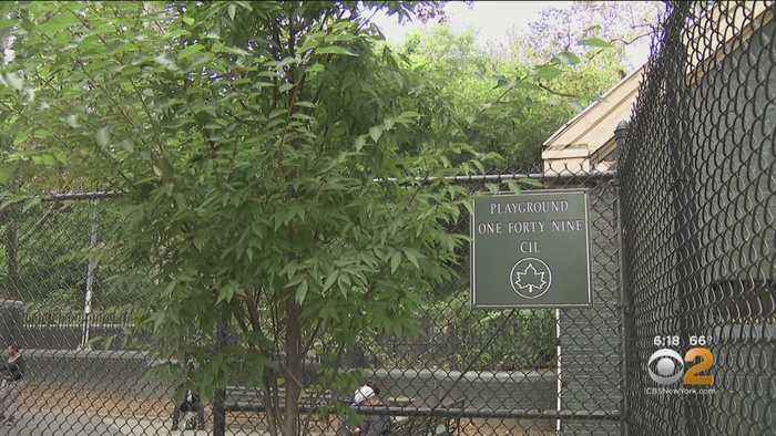 Tree Planted In Honor Of Child Who Died From Allergic Reaction