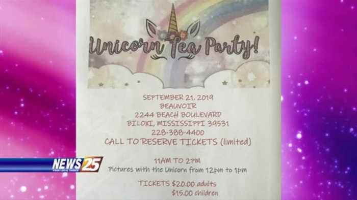Unicorn Tea Party at Beauvoir