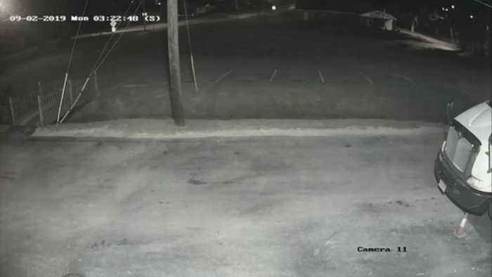 Surveillance footage: Huntsville police investigating after delivery driver attacked (1)