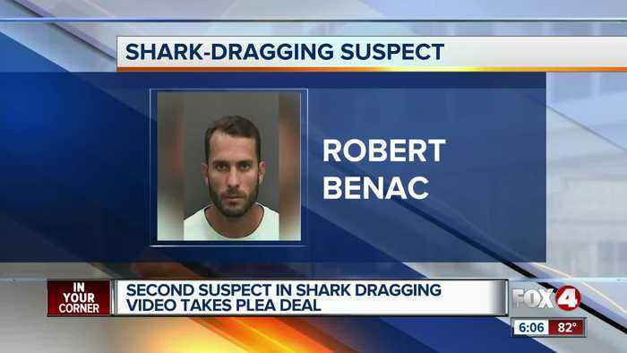 Second man sentenced in shark dragging case