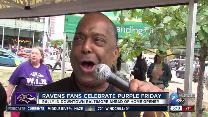 Ravens fans celebrate purple Friday