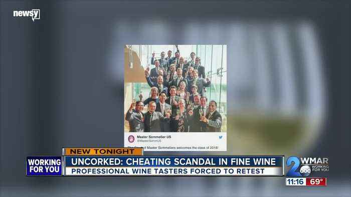 Uncorked: Newsy's investigation of the elite wine world