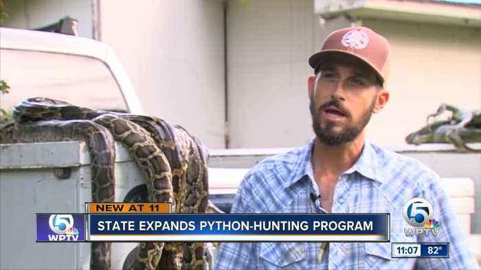 Python program to expand
