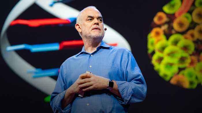 The radical possibilities of man-made DNA | Floyd E. Romesberg