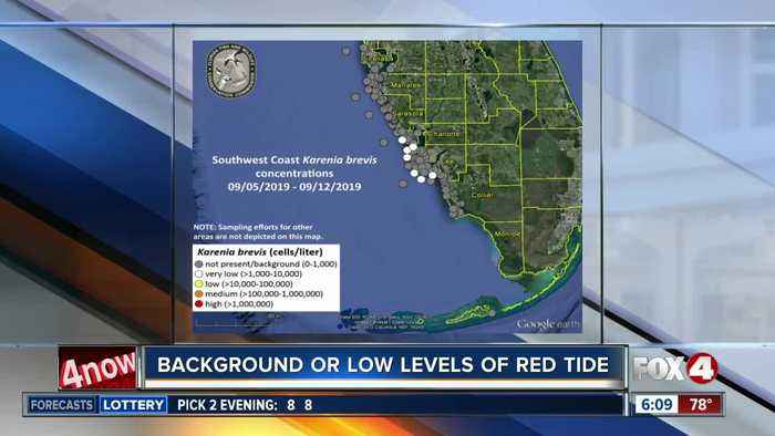 Low levels of red tide detected off Charlotte and Lee counties
