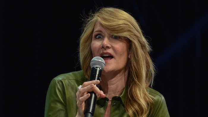 Laura Dern dismisses Bradley Cooper dating rumours