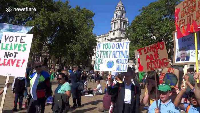 'Vote leaves - not leave!' Climate change activists take over London with banners and flags