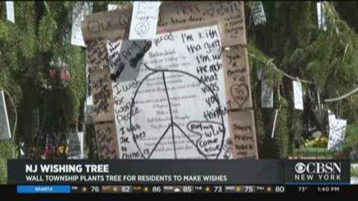 Mysterious Wishing Tree Offering Hope For Some NJ Dreamers