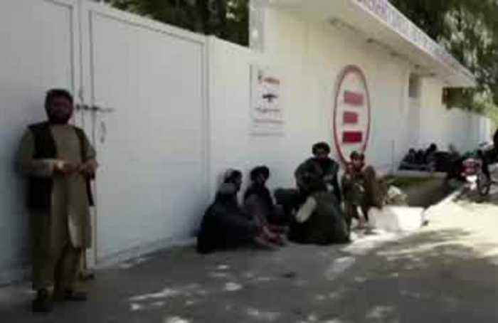Wedding guests killed in Afghan army raid