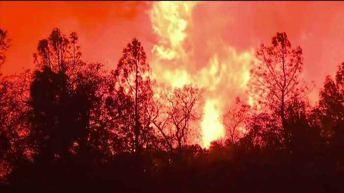 SoCal Edison Considers Power Shutoff for Thousands of Customers Amid Wildfire Threat