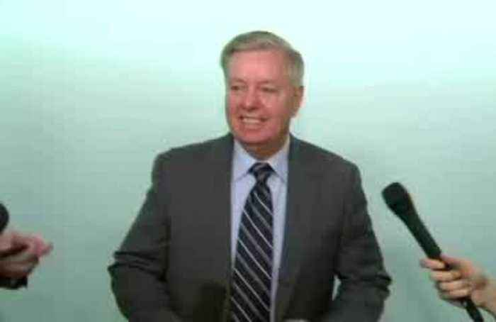 Ukraine call transcript 'underwhelming': Graham