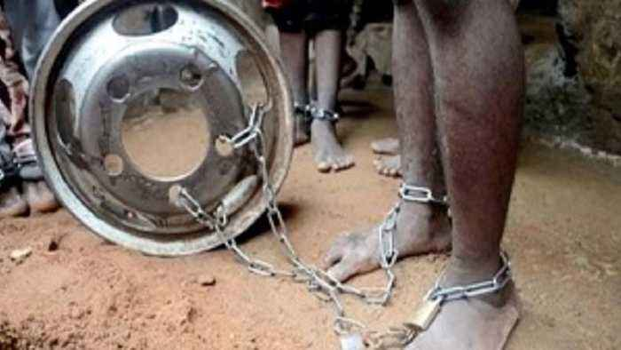 Hundreds of chained captives released from Nigerian school