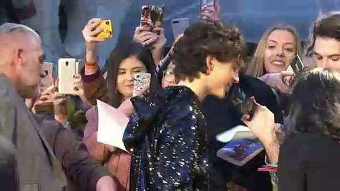 Timothée Chalamet hugs fans at 'The King' premiere in London