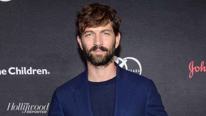 Michiel Huisman to Star in HBO Max Series 'The Flight Attendant' Alongside Kaley Cuoco | THR News