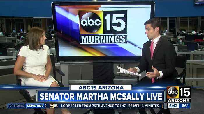 Sen. Martha McSally sits down with ABC15