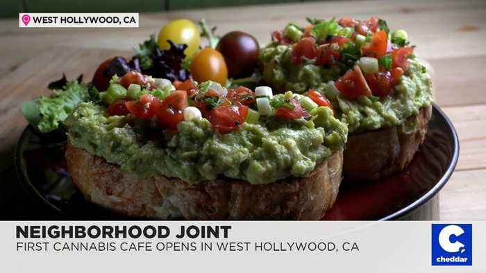 Getting High on Your Own Supply at the First Cannabis Restaurant in the Country