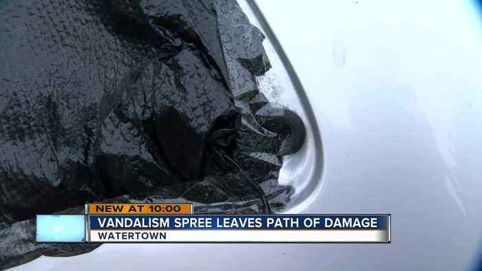 Vandals leave behind trail of damage in Watertown