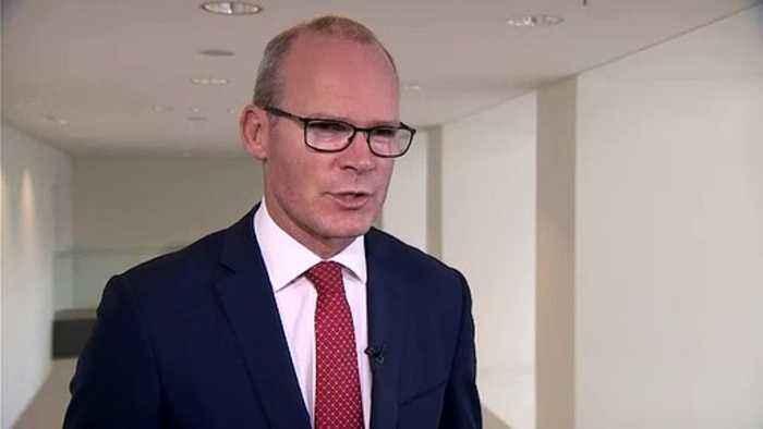 Simon Coveney tells Euronews the UK 'needs to move to facilitate deal'