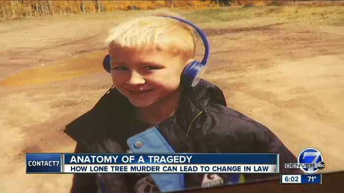 Calls for change, dedicated family law courts, after Lone Tree murder-suicide