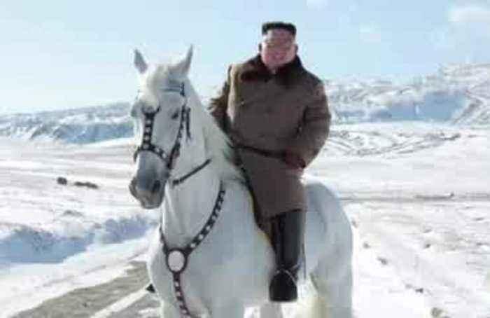 North Korea's Kim rides white stallion ahead of 'great operation'