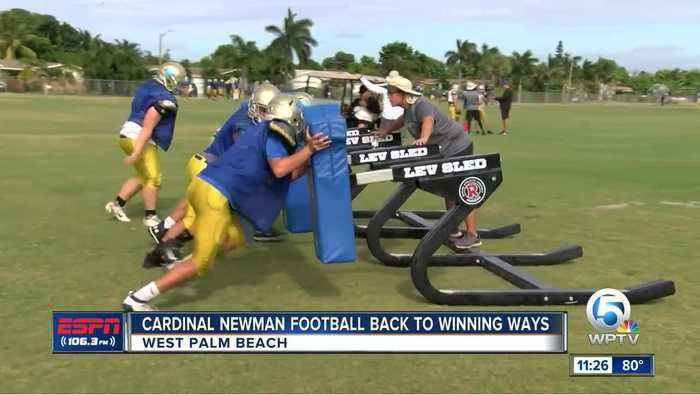 Cardinal Newman Football back to winning ways