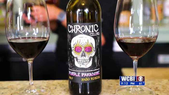 Uncorked - Scary Movies