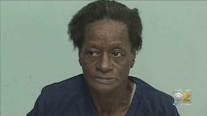 Woman Charged In Lake County Forest Preserve Stabbing