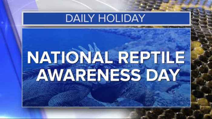 Daily Holiday - National reptile awareness day