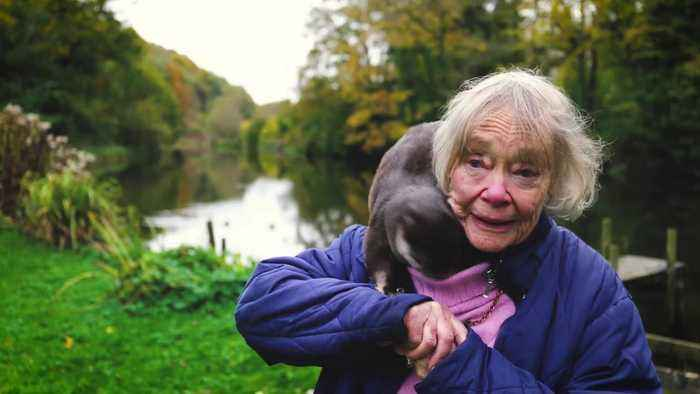 Meet the animal-loving pensioner who has spent her life helping to raise OTTERS - and regularly walks around town with one sat o