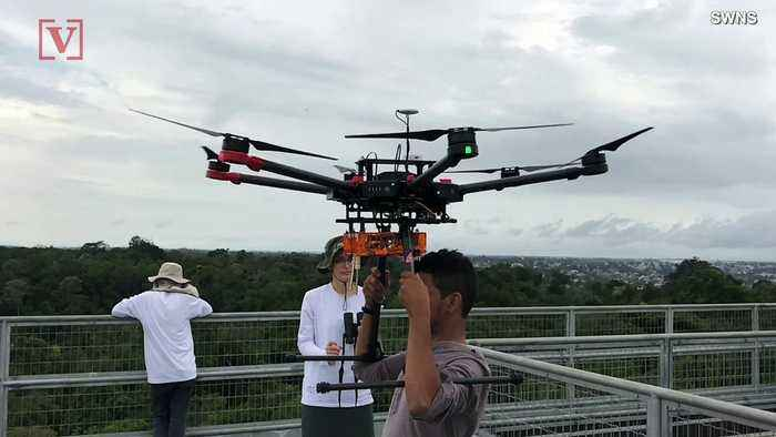 Drones Used in Big Budget Movies Find New Life Exploring Unreachable Parts of the Amazon Rainforest