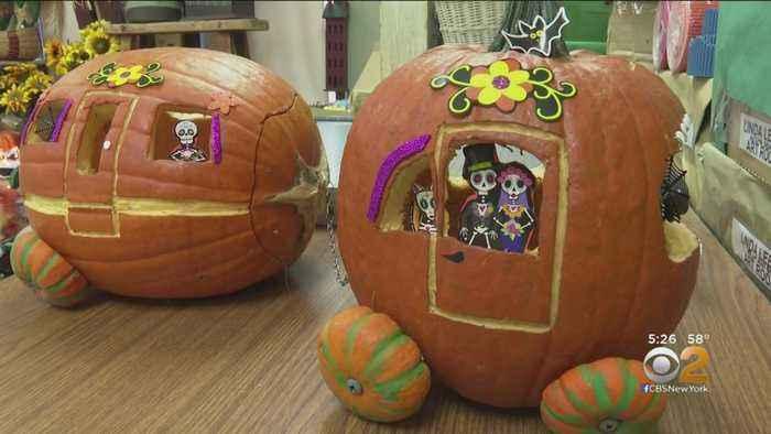 LI Teachers Hope Long-Running Pumpkin Decorating Contest Will Set World Record