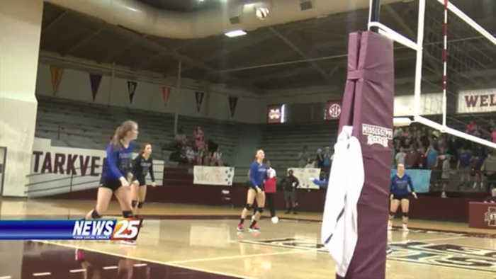 Vancleave Lady Bulldogs volleyball wins state championship