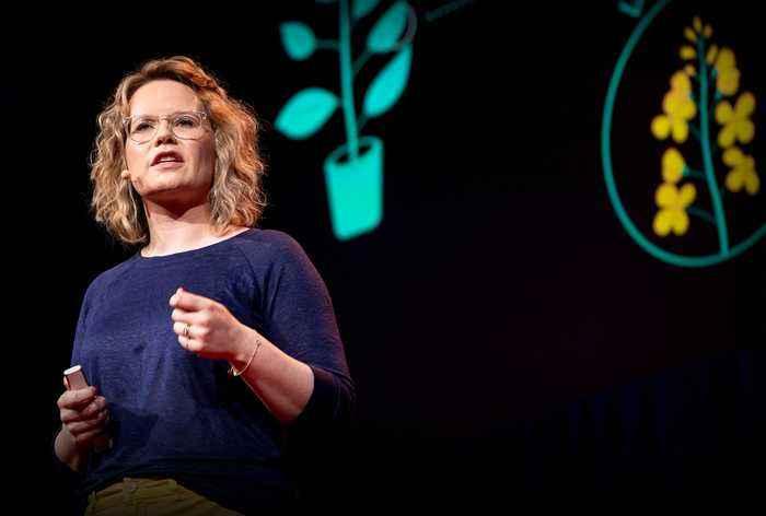 The next software revolution: programming biological cells | Sara-Jane Dunn