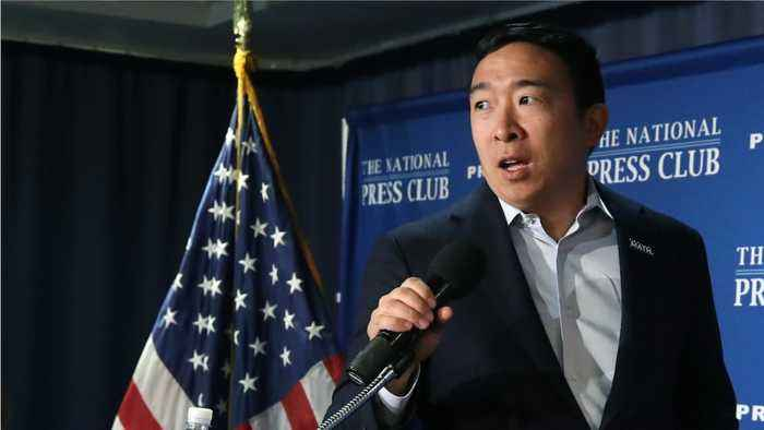 Andrew Yang Thinks The Impeachment Probe Against Trump Will Hurt Democrats