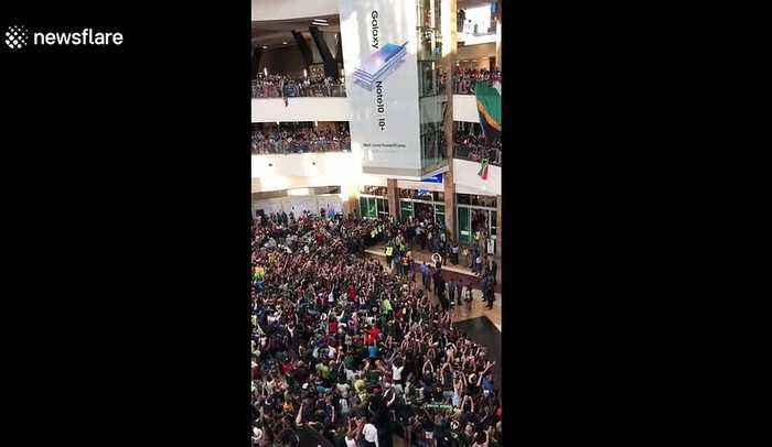 Springboks arrive back in South Africa to hero's welcome at Johannesburg airport