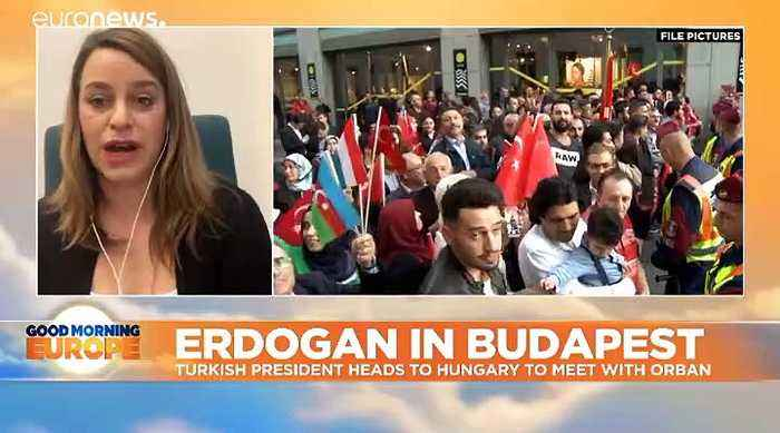 Turkey's Erdoğan will be met by pro-Kurdish protests on visit to Orbán