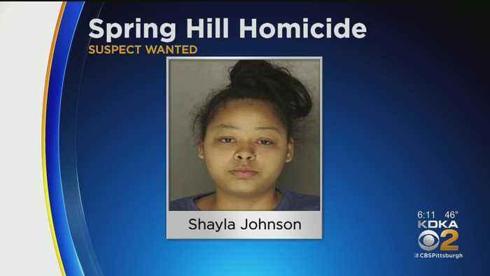 Police Seek Suspect After Spring Hill Shooting Victim Dies