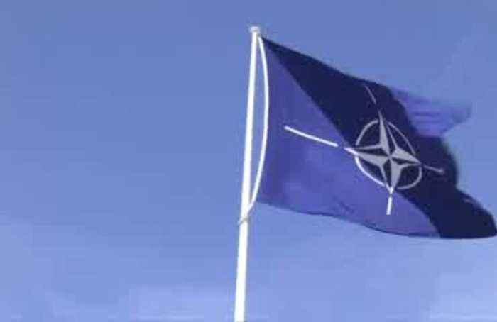 Macron: NATO experiencing 'brain death'