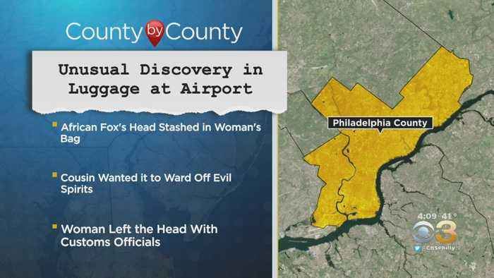 Unusual Discovery Made In Luggage At Philadelphia International Airport