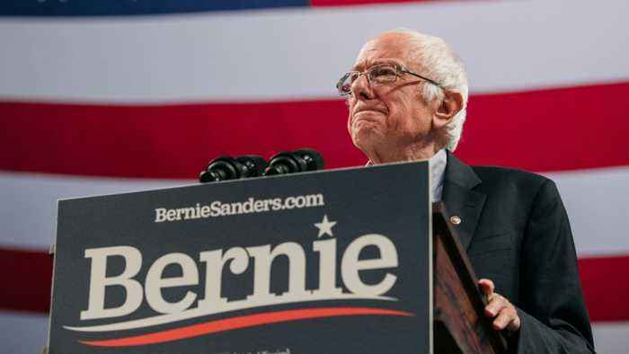 Elizabeth Warren And Bernie Sanders React To Bloomberg Joining Presidential Race