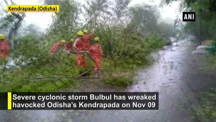 Cyclone Bulbul wreaks havoc in Odisha trees uprooted