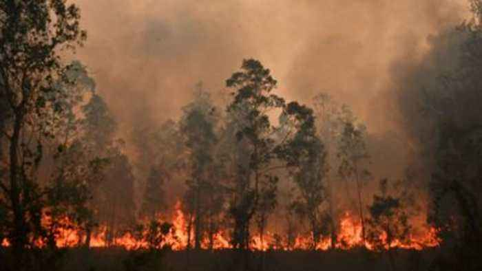 Catastrophic fires rage along Australia's east coast