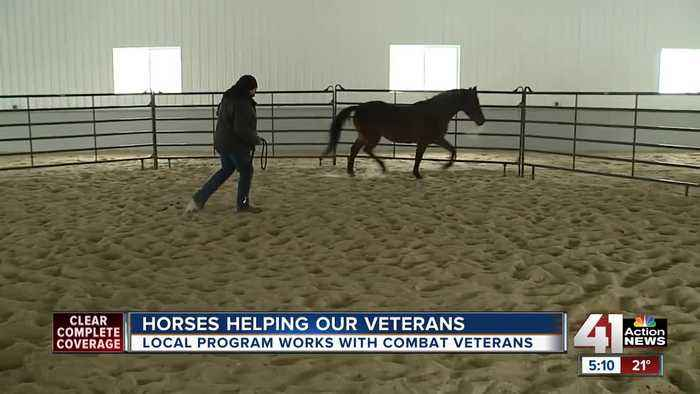 Kansas horse ranch helps veterans nationwide overcome PTSD, other conditions