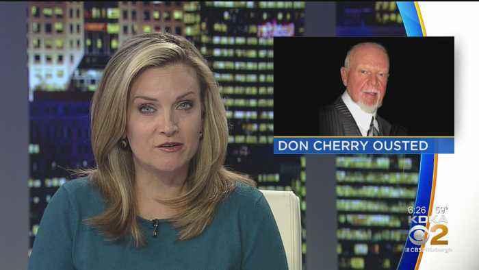 Hockey Commentator Don Cherry Fired