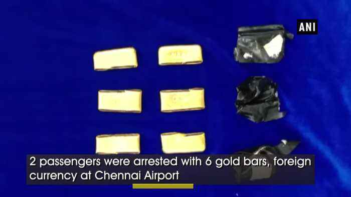Custom officials seize over 11kg gold, foreign currency at Chennai airport