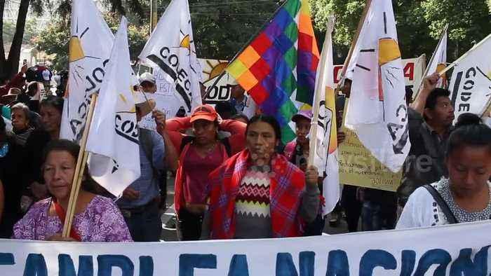 Dozens protest in support of former Bolivian president Evo Morales in Guatemala